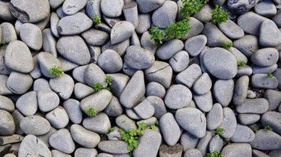 Pražské skaly