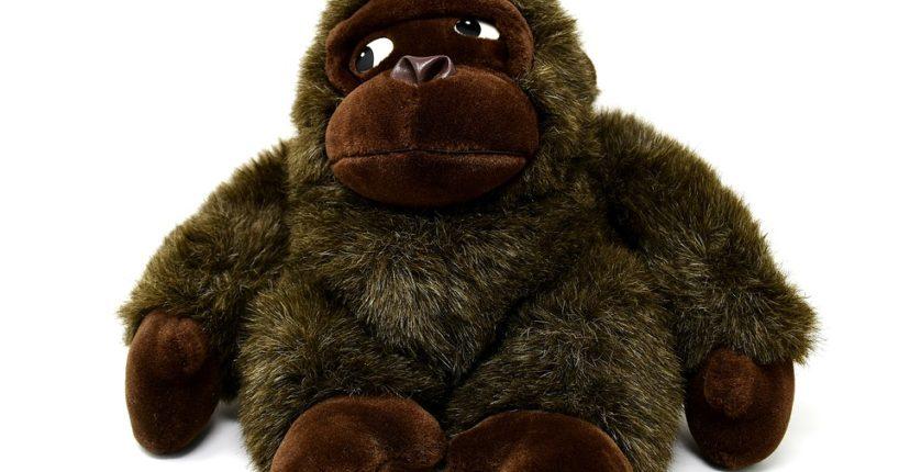 Stažení opičky z prodeje