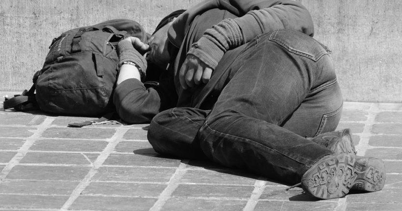 I letos se v zimě myslí na lidi bez domova. Dokonce i na jejich psy